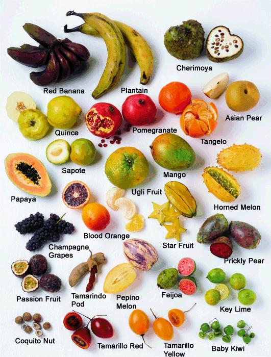 Fruit Basics