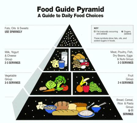 6 A Guide To The Food Pyramid