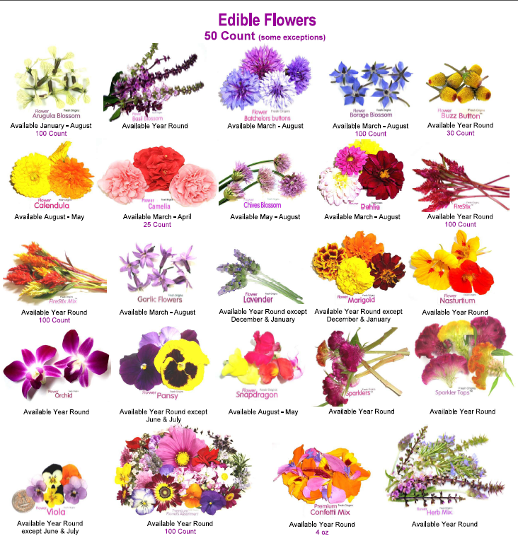 Edible flower garden for Kinds of flowers with name and picture