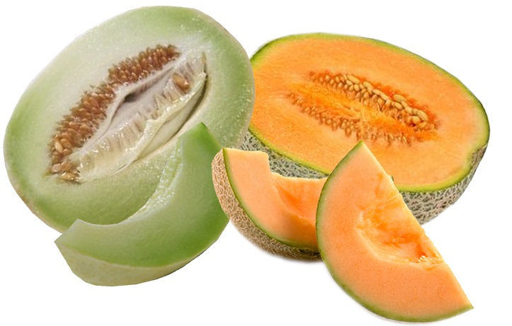Cantaloupe Inside / Cantaloupes are an excellent source of vitamin c and a.